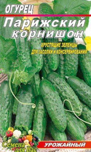 Cucumber-parizhskiy-kornishon