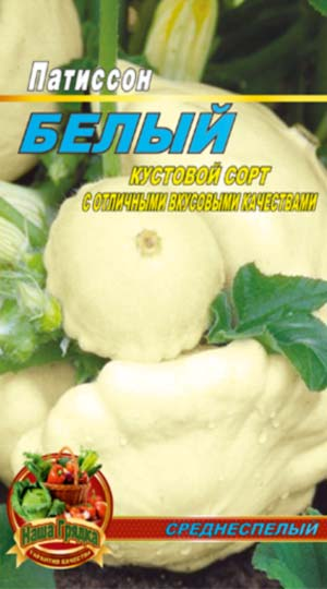 squash-belyj-13
