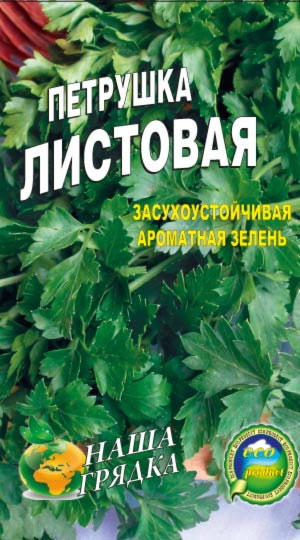 Parsley-listovaya