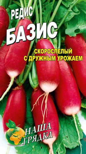 Radish-bazis