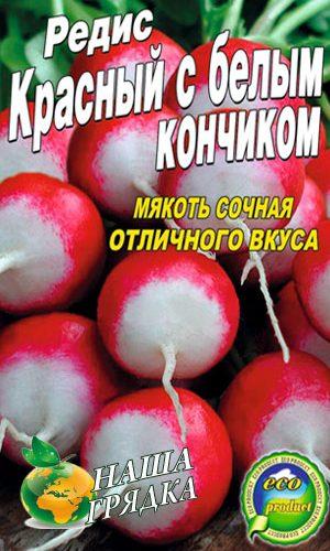 Radish-krasnyiy-s-belyim-konchikom