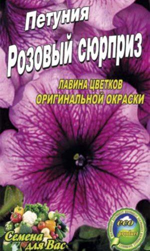 Petunia-rozovyiy-syurpriz