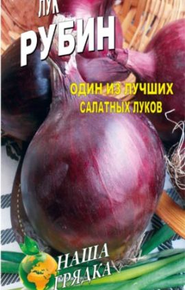 Onion-rubin-salatnyiy-luk