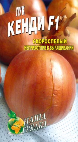 Onion-Kendi-F1-semena