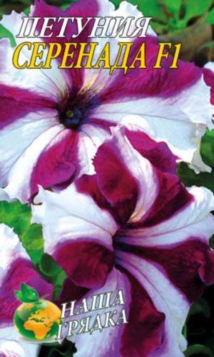 Petunia-serenada