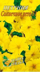 Petunia-solnechnoe-leto