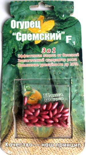 Cucumber-sremskiy-drazh