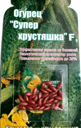 Cucumber-super-hrustyashka