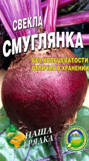Beet-stolovaya-smuglyanka