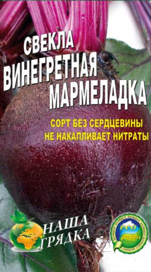 Beet-vinegretnaya