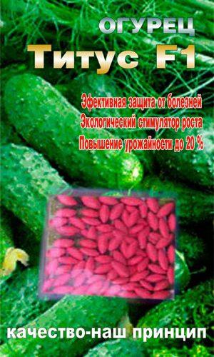 Cucumber-titus-semena-katalog