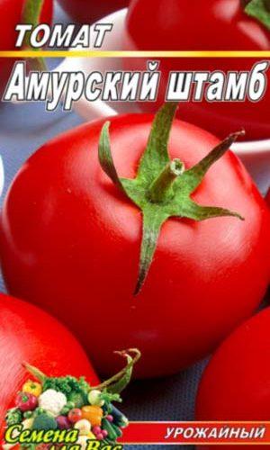 tomato-Amurskiy-shtamb