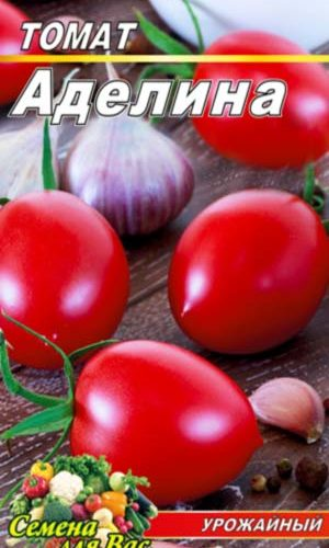tomato-adelina