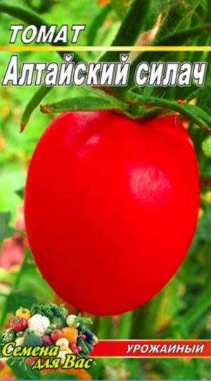 tomato-altayskiy-silach