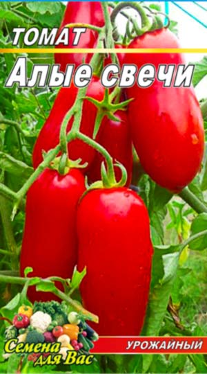tomato-alyie-svechi