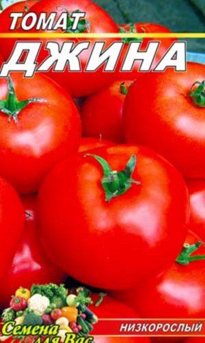 tomato-dzhina