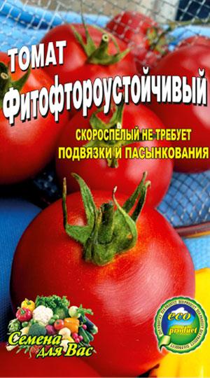 tomato-fito-ftoro-ustoychivyiy