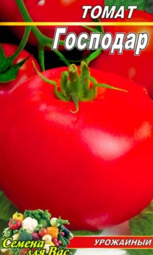 tomato-gospodar