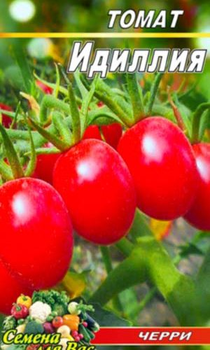tomato-idilliya