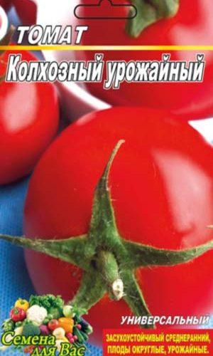 tomato-kolhoznyiy-urozhaynyiy