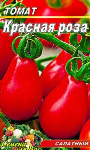 tomato-krasnaya-roza