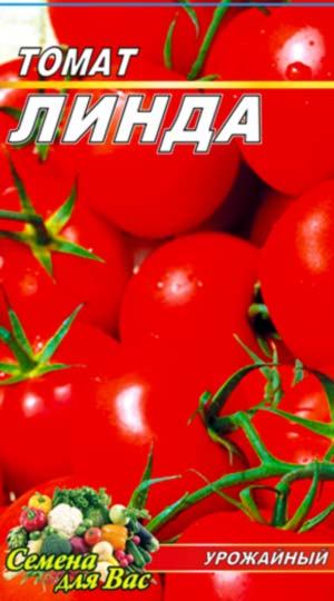 tomato-linda