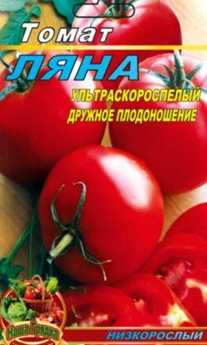 tomato-lyana