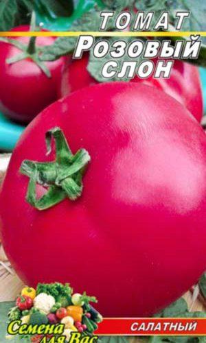 tomato-rozovyiy-slon