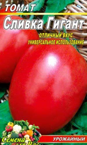 tomato-slivka-gigant