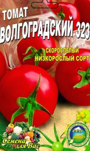 tomato-volgogradskiy-323