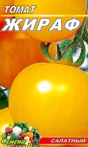 tomato-zhiraf