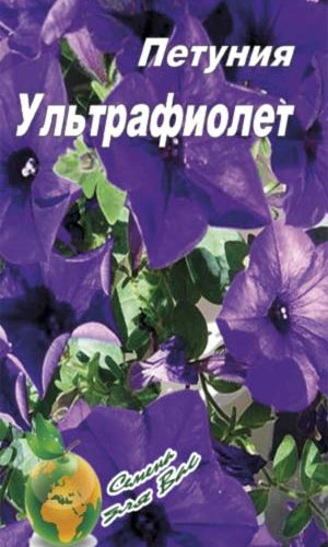 Petunia-ultrafiolet