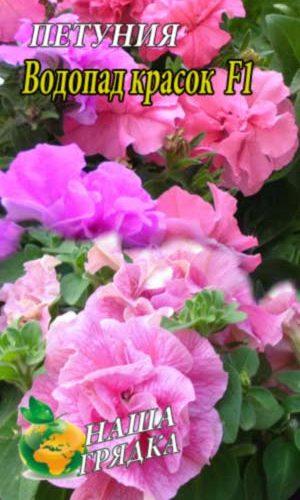Petunia-vodopad-krasok