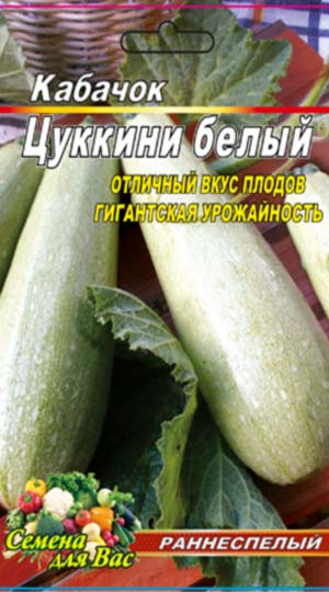 vegetable-marrow-tsukkini-Belyj