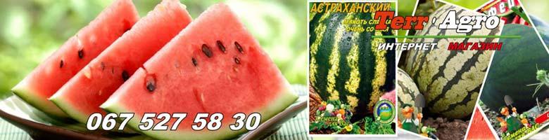 Kupit-semena-arbuza-v-Ukraine