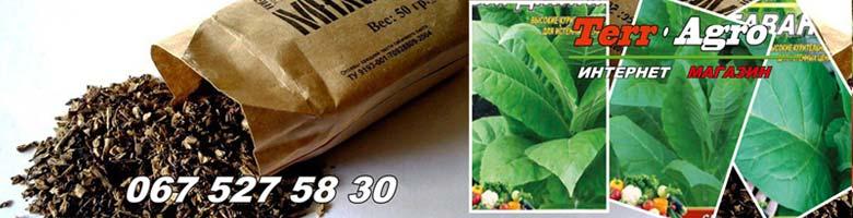 Semena-mahorki-i-tabaka-kupit